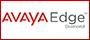 Avaya Diamond Partner