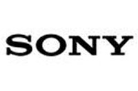 DataVox Physical Security Partners - Sony